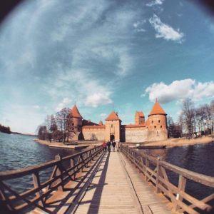 zirnio-foto2