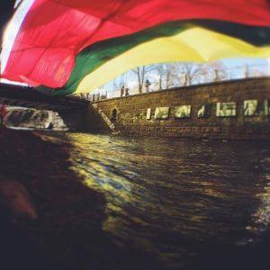 zirnio-foto5